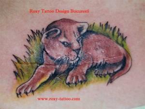 tigru-roxy-tatuaje acoperire cicatrice operatie arsura tatuaje
