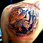 tigru_roxy_saloane_tattoo