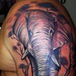 elefant model tatuaj brat baieti
