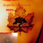 modele tatuaje acoperire spate frunza