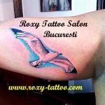 modele tatuaje brat pescarus