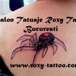modele tatuaje spate paianjen 3d