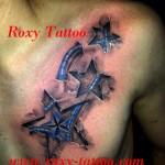 modele tatuaje stele biomecanic piept
