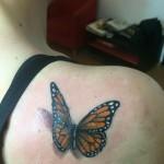 modele tatuaje fluture fete salon roxy tattoo