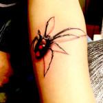 modele tatuaje baieti paianjen 3D salon roxy
