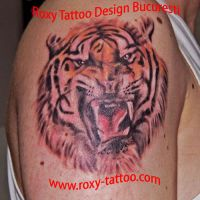 tatuaje-baieti-tiger-roxy-tattoo